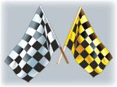 Flags rally — Stockvector