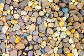 Piedras de cantos rodados grava decorativa en jardín — Foto de Stock