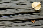 Hard Wood Background with Dried leaves — Photo