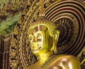 Large Golden Buddha Statue at Wat Chanasongkram — Zdjęcie stockowe