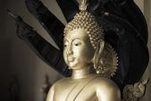 Closeup socha buddhy — Stock fotografie