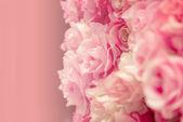 Pink rose pastel — Stock Photo
