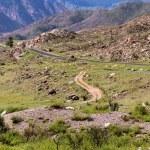 Altai mountains rocks roads — Stock Photo #54996259