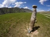 Ancient deer stone — Stockfoto