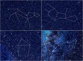 Zodiac constellations Leo Virgo Libra Scorpio — Stock Photo