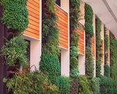 Ökologische Architektur — Stockfoto