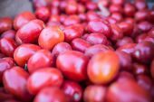 A bunch of tomatoes on a market — Stock Photo