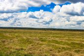 Eternity meadow and cloudy sky — Foto Stock