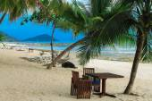 Beach, palms, table and hammock are all what is needed for relax — Foto Stock