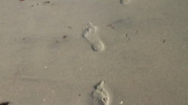 Foot Prints In The Sand — Stockvideo