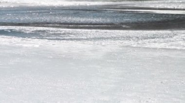 Thin Melting Ice on Pond — Video Stock