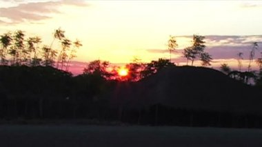 Sunset in Africa — Stock Video