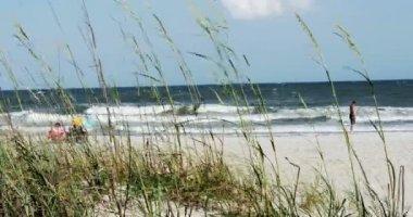 People Enjoying the Beach — Stock Video