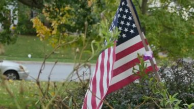 American Flag Blowing — Stockvideo