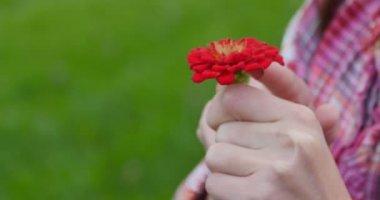 Holding Red Flower — Stock Video