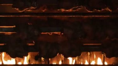 Rotisserie Chickens with Fire — Stock Video