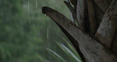 Şiddetli yağmur fırtına — Stok video