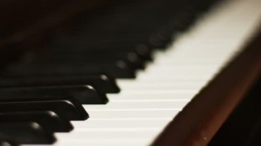 View of Piano keys — Stock Video