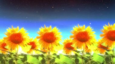 Into Heaven with Sunflowers — Vídeo de stock