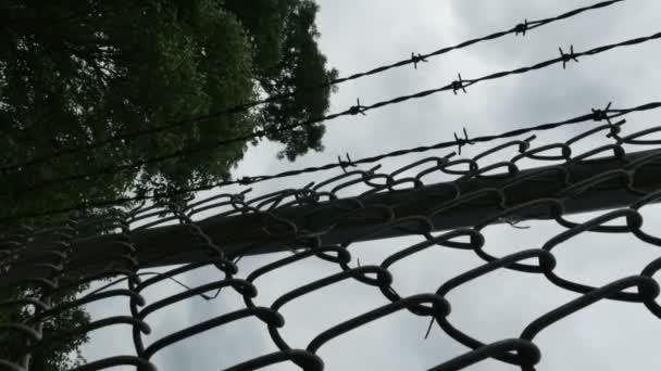 Clôture en fil de fer barbelé — Vidéo