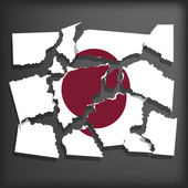 Flag of Japan — Stock Vector