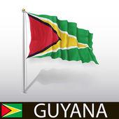 Flag of Guyana — Stock Vector