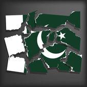Flag of Pakistan — Stock Vector