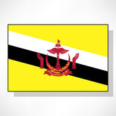 Flag of Brunei — Stock Vector