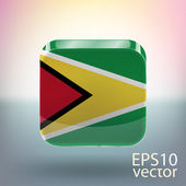Flag of Guyana — Stock Vector