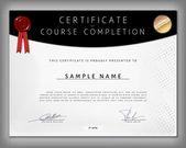 Certificate of computer programming — Stock Vector