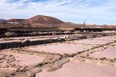 Salinas de los Agujeros, Lanzarote — Stock Photo