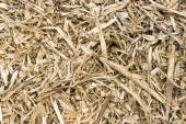 Wood pulp background texture — Stock Photo