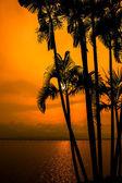 Sunset view — Stock Photo