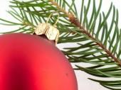 Red Christmas ball and pine twig. — Stock Photo