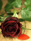 Red rose and red heart on a wooden table. — ストック写真