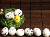 Easter chicken and eggs in the nest. — Stock Photo