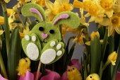Jonquilles de Easter bunny et jaune. — Photo