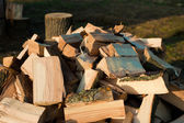 Stack of dry chopped firewood — Stock Photo