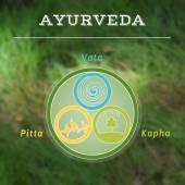 Ayurveda vector illustration. — Stock Vector