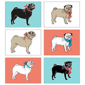 Pug dog set — Stock Vector