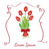 Tulips bouquet with red ribbon — Stock Vector