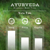 Ayurvedic body types — Stock Vector