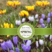 Backdrop with spring garden. — Stock Vector