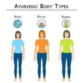 Ayurveda vector illustration. Ayurvedic body types, vata, pitta, kapha. — Stock Vector