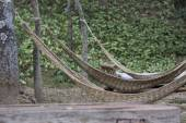 Hammock in the garden — Stock Photo