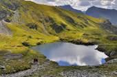 Tourists hiking and camping near mountain lake — Stock Photo