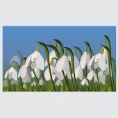 Snowdrop flower. spring background. vector — Stock vektor