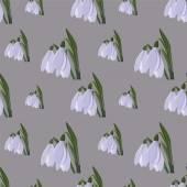 Snowdrop. spring flower. vector — Stock Vector