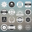 Vector set: vintage fathers day labels and icons on the blurred — Stock Vector #73082361