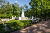 Peterhof. — Zdjęcie stockowe